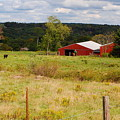 Connecticut Farm by Andrea Simon