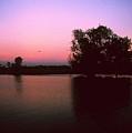 Cooinda Sunrise by Gary Wonning
