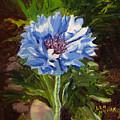 Cornflower by Lea Novak