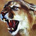 Cougar by J W Baker