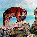 Cougars Mother And Cub by Stan Hamilton