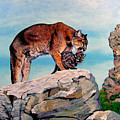 Cougars by Stan Hamilton