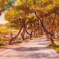 Country Lane by Doranne Alden