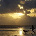 County Meath, Ireland Girl Walking Dog by Peter McCabe