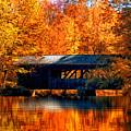 Covered Bridge by Joann Vitali
