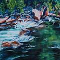 Covington Falls by Donna Pierce-Clark