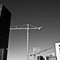 Cranes And Buildings Bw by Angus Hooper Iii