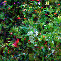 Crazyquilt Garden by RC DeWinter