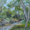 Creek At Linn Haven by Marilyn Masters