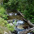 Creek On Mt. Spokane 1 by Ben Upham III