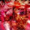 Creolite - Double Consciousness by Fania Simon