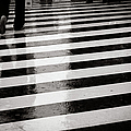 Crosswalk In Rain by photo by Jason Weddington