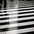 Crosswalk In Rain by photo by Jason Weddington