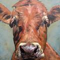 Curious Cow by Leigh Banks