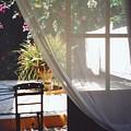 Curtain by Andrea Simon