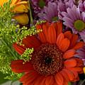 Daisy Bouquet by Phyllis Denton