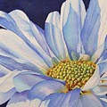 Daisy by Greg and Linda Halom