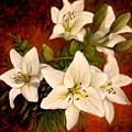 Day Lilies by Donelli  DiMaria