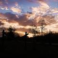 Daybreak by Nikki Mansur