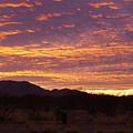 Delightful Sky by Kathleen Nash