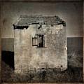 Derelict Hut  Textured by Bernard Jaubert