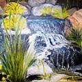 Descanso Waterfall by Madeleine Prochazka