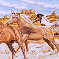 Desert Run by Richard De Wolfe