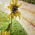 Detail Slunecnic3 by Pablo de Choros