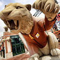 Detroit Tigers Tiger Statue Outside Of Comerica Park Detroit Michigan by Gordon Dean II