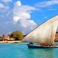 Dhow Off Zanzibar by Dominic Piperata
