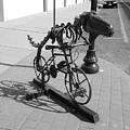 Dinosaur Biking Sculpture Grand Junction Co by Tommy Anderson