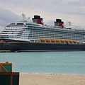 Disney Dream by Michael Albright