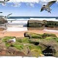 Do-00046 Birdie Beach by Digital Oil
