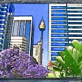 Do-00285 Sydney Centre Tower In Spring by Digital Oil