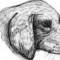 Doggie by Caroline Lifshey