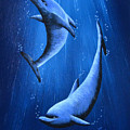Dolphins by Roberta Landers