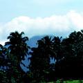 Dominica by Thomas R Fletcher