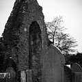 Donegal Abbey Ruins Donegal Ireland by Teresa Mucha