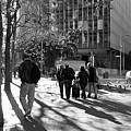 Downtownscape - Black And White by Suzanne Gaff