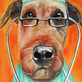 Dr. Dog by Michelle Hayden-Marsan