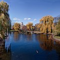 Duck Pond Public Gardens Boston Massachusetts by Thomas Marchessault