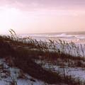 Dune Sunrise by Deborah Gallaway