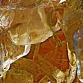 Dunkin Ice Coffee 7 by Sarah Loft