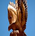 Eagle Has Landed by LeeAnn McLaneGoetz McLaneGoetzStudioLLCcom