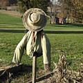 Early Autumn Scarecrow by William Kuta