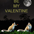 Eftalou Foxes Be My Valentine by Eric Kempson