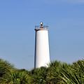 Egmont Key Florida by David Lee Thompson