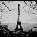 Eiffel Eyeful by J Todd