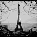 Eiffel Eyeful by J Todd