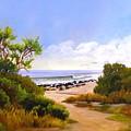 El Capitan Beach by Dorothy Nalls